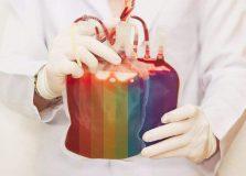 STF declara inconstitucional proibir homens gays de doarem sangue