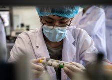 Brasil vai começar a testar vacina de Oxford para Covid-19
