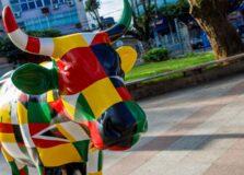 Vacas da CowParade de Salvador vão a leilão beneficente no Rio de Janeiro